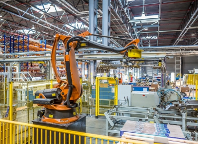 industrial robot packer in the workshop production