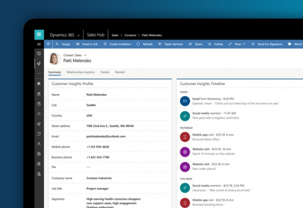 Dynamics 365 Customer Insights HSO